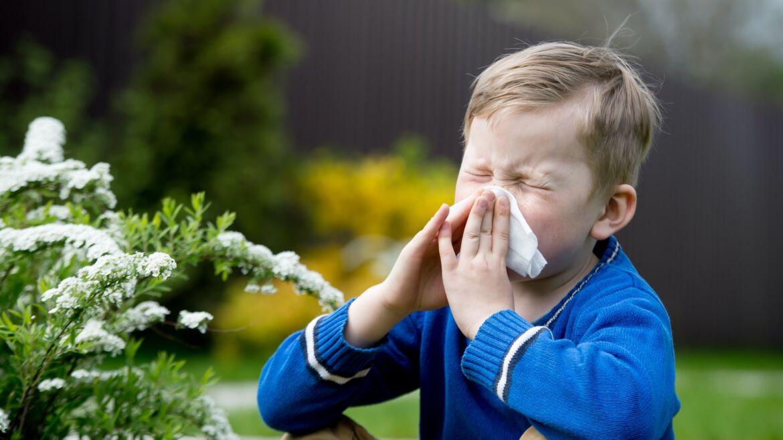 Clínica de rinología y alergia